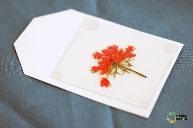 étiquette fleur