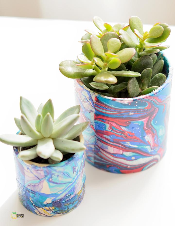 pots à succulentes marbrés