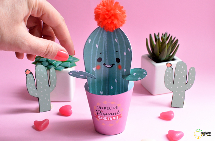 diy cactus en papier pour la saint valentin madame citron blog de cr ations et diy. Black Bedroom Furniture Sets. Home Design Ideas